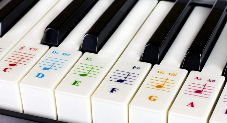 Piano key labels for beginners
